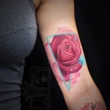 Gorgeous Pink Rose in triangle