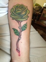 Green rose with spikes