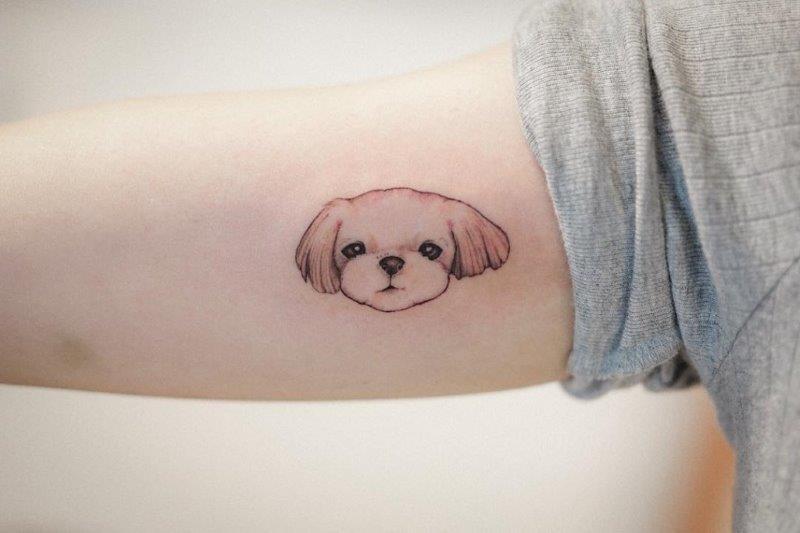Maltese dog tattoo on arm
