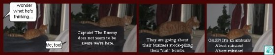 CatThots