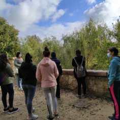 """Visita escolar sobre """"Los sotos de la Albolafia"""""""