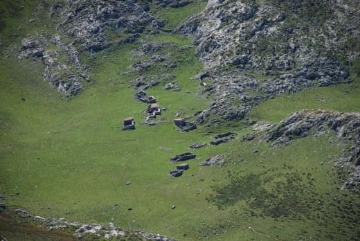 Praderas y pastos de alta montaña. Equilibrio entre los recursos naturales y su aprovechamiento ganadero (ganadería extensiva).