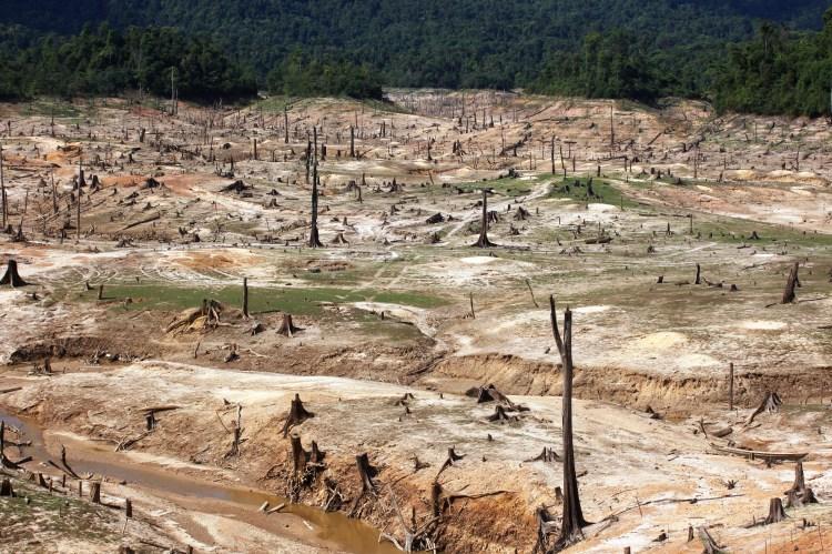 Nghĩa địa rừng tự nhiên dưới đáy hồ thủy điện Khe Diên, huyện Nam Giang, tỉnh Quảng Nam. (Ảnh: Vietnam+)