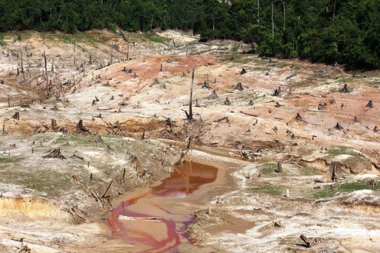 Thủy điện biến rừng tự nhiên thành thung lũng chết. (Ảnh: Vietnam+)