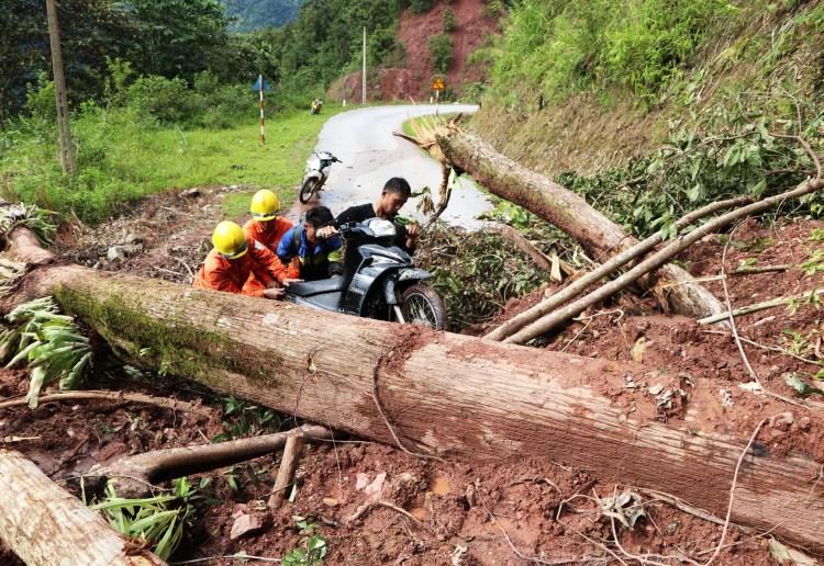 Vì sao lũ quét, sạt lở đất vẫn liên tiếp xảy ra tại các tỉnh mất rừng?. (Ảnh: TTXVN/Vietnam+)