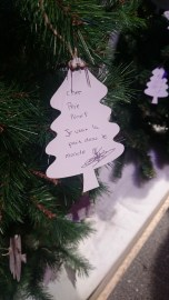 'Dear Father Christmas, I want peace in the world'