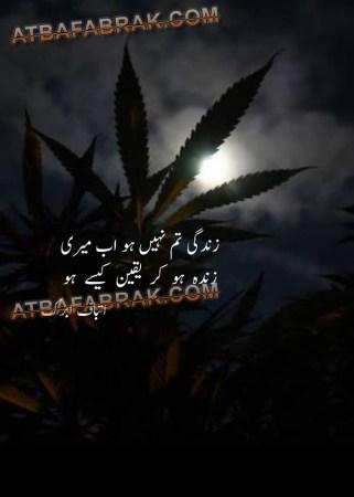 Zindagi tum nahi ho ab meri