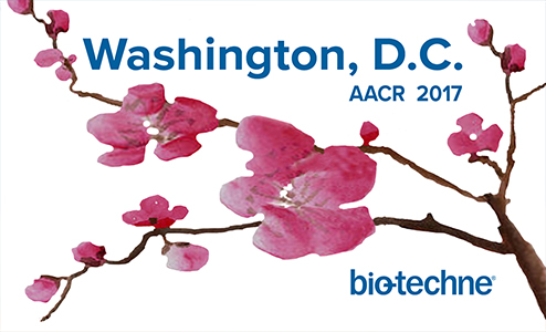 aacr-2017