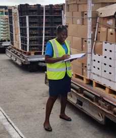 Cargo staff member on duty at the Seychelles International Airport