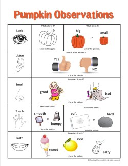 Pumpkin Observation Chart