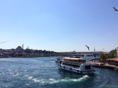 View from the Galata Bridge.