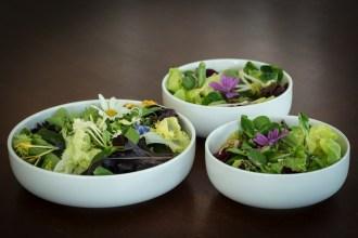 Salades de fleurs bols
