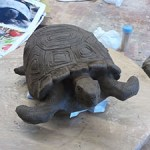 modelage_tortue_300px