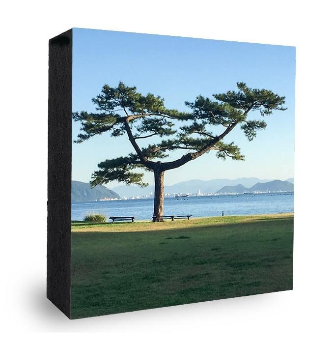 Baum Idyll