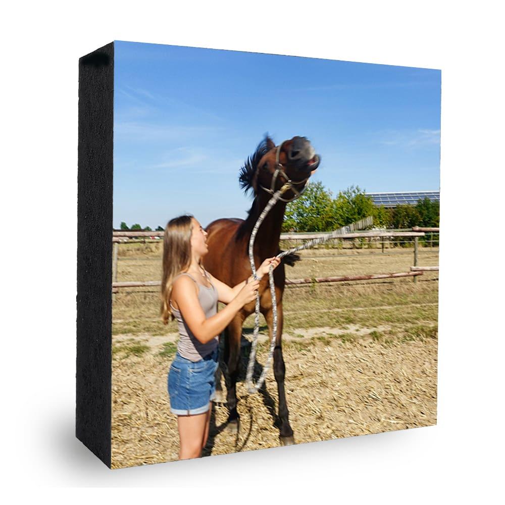 Bild auf Holz Beispiel Pferd Dressur