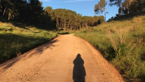 Camino Nájera