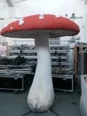 ciuperci-alice-in-wonderland-20