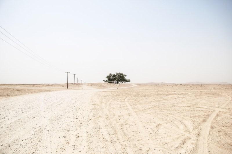 Un paysage vide.