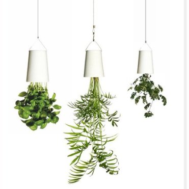 Câble de suspension et pots suspendus par Sky Planter