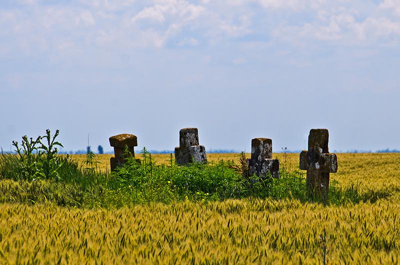 """Crucea de piatră """"La patru frați"""", IL-IV-m-B-14181"""