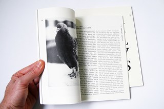Animal Lovers | Publikationen | Katalog & Essayheft