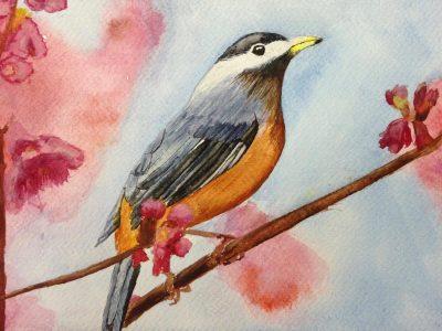 vogel in aquarelverf