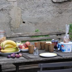 ontbijt in de tuin