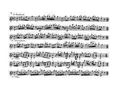 BI254 page2