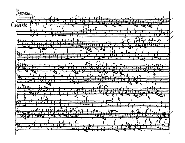 BI133 page3