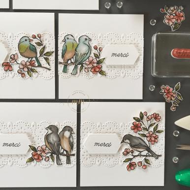 Cartes de remerciements Ballade des Oiseaux 2019 12