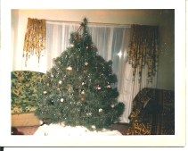 We must have decided to make up in size what we lacked in decorating prowess.
