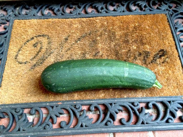 zucchini on doorstep
