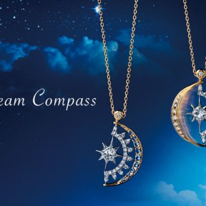 pic_dreamcompass1