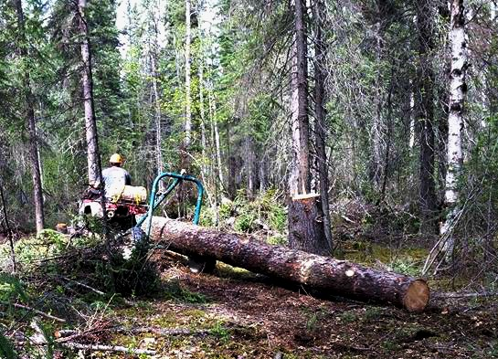 A log is hauled out on a custom-built trailer. Photo by Edwin Bifelt