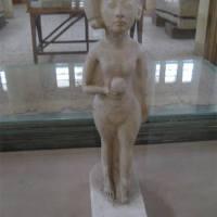 متحف ملوي، المنيا