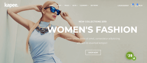 15 + Highly Extentenable Best WooCommerce themes to build Your next WordPress store