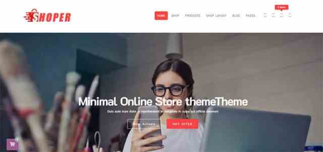 Best Minimal shop WordPress theme