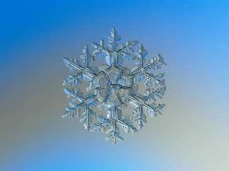 Snowflake_macro_photography
