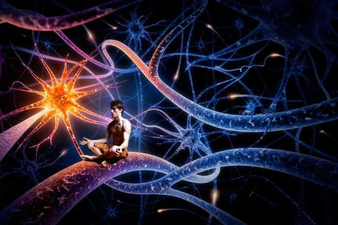 Does Your Multitasking Spark Joy?