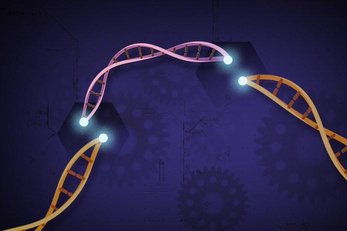The Future of CRISPR Therapy