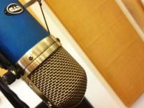 CAD VX2 Microphone