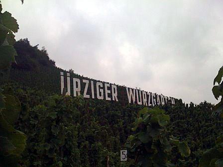 urz wurz no people