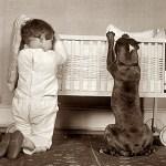 Boy and pit bull 'praying.' From: http://goo.gl/ahFLu