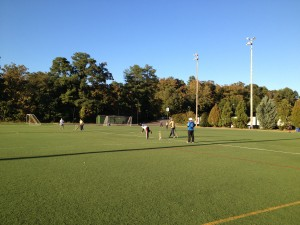 Cricket match on the football pitch at UNC CH NC USA observed by FitOldDog