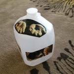 FitOldDog's son's water jug, with Matrix Movie sticker, to help him stay the course.