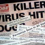 FitOldDog's Warning: Ebola Could Wipe Out Two-Thirds Of The Human Race - Raise Awareness But Don't Panic!
