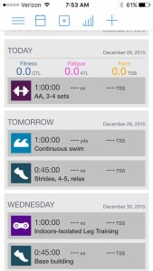 Joe Friel's 24-week Ironman training plan, starts today.