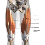 Solving Running Muscle Strain - A Stitch In Time