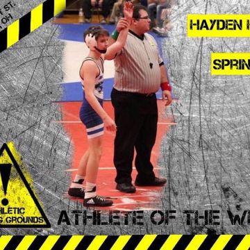 Hayden Hollis, Springboro