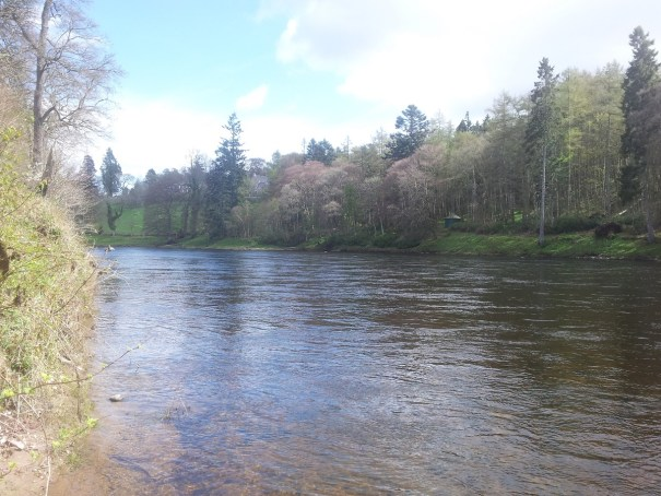 stobhall fishings